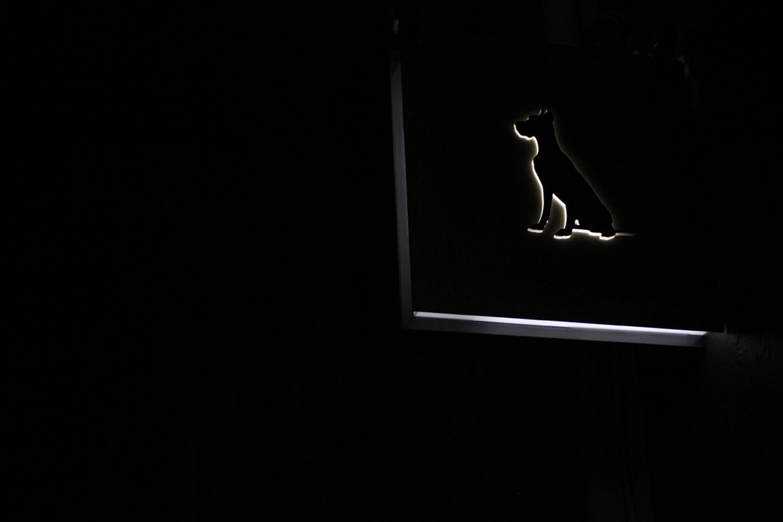 Great Dane furniture exterior illuminated signage at night